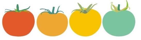 tomatoes logo